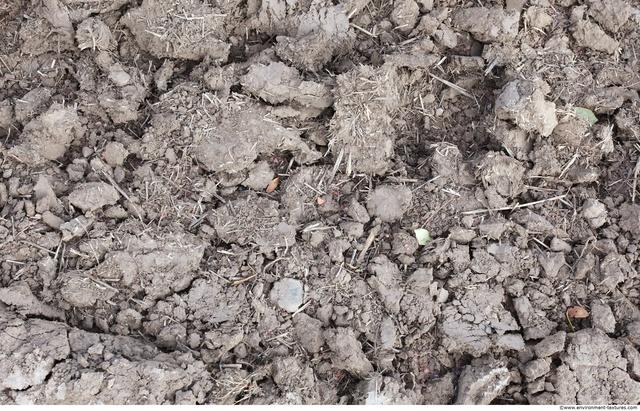 Rough Soil