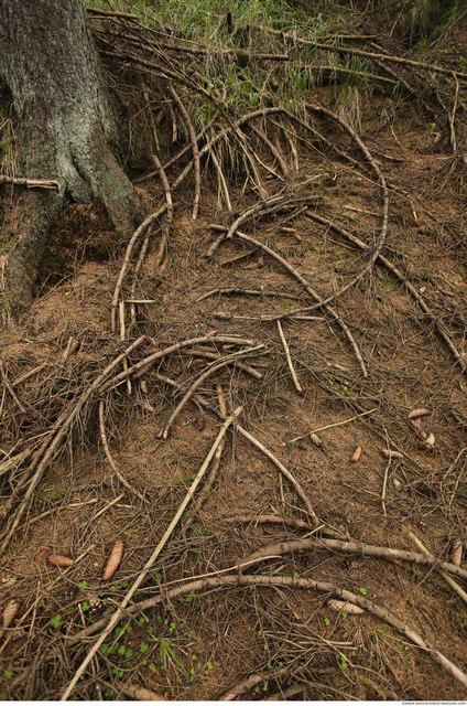 Various Ground