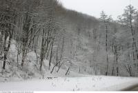 background nature winter