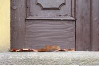 Doors Historical 0024