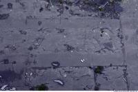 Photo Texture of Cracky Asphalt