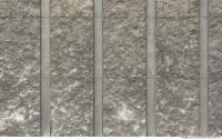 Walls Concrete 0005