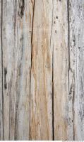 Wood 0031