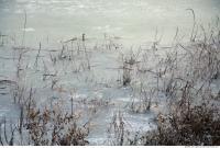 Ice Snow 0001