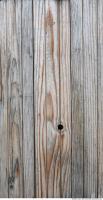 Wood 0069