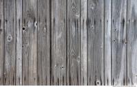 Wood 0025