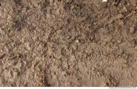 photo texture of soil mud