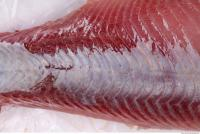 fish tuna meat