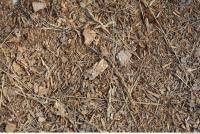Wood Chips 0002