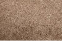 Photo Texture of Carpet 0001