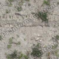 High Resolution Seamless Grass Texture 0003