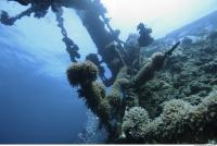 Photo Reference of Shipwreck Sudan Undersea 0014