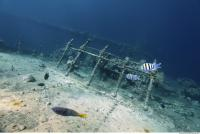 Photo Reference of Shipwreck Sudan Undersea 0024