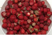 Photo Texture of Strawberries 0001