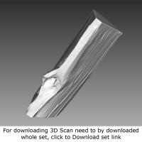 3D Scan of Log Wood