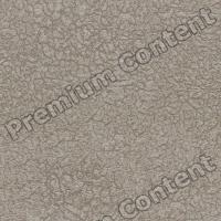 photo texture of wallpaper seamless 0003