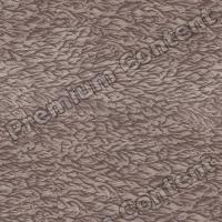 photo texture of wallpaper seamless 0001