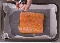 photo texture of salmon 0001