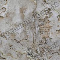 seamless of wall plaster 0005