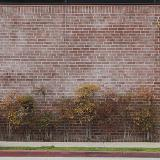 Photo Textures of Mixed American Walls