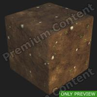PBR substance preview forest ground 0001