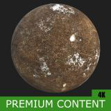 PBR Substance Material of Ground Forest Snowy