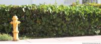 exotic hedge 0001