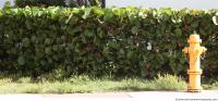 exotic hedge 0002