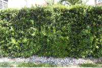 exotic hedge 0004