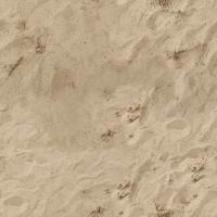 seamless ground sand beach 0001
