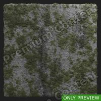 PBR ground concrete mossy preview 0002