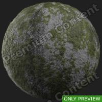 PBR ground concrete mossy preview 0001