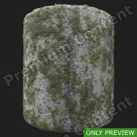 PBR ground concrete mossy preview 0003