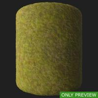 PBR moss preview 0003