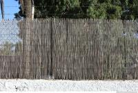 cane wall