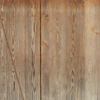 Photo Textures of Wood