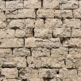 Wall Bricks Plastered