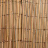Cane Walls