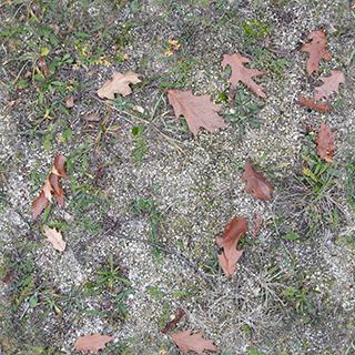 Seamless Ground Various