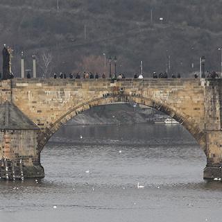 Bridges & Overpass