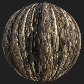 Tree Bark PBR Texture #3