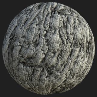 Tree Bark PBR Texture #5