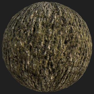 Tree Bark PBR Texture #6