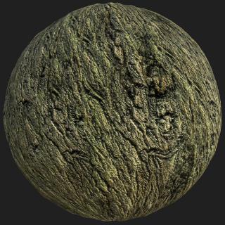 Tree Bark PBR Texture #10