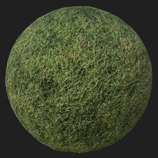 Grass PBR Texture #2